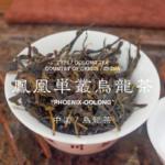 鳳凰単叢の紹介と特徴について|おすすめの鳳凰単叢の選び方|中国茶・烏龍茶