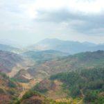 雲南省プーアル茶レポート2018