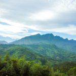 台湾烏龍茶|凍頂烏龍茶の産地|台湾・凍頂山へのアクセス